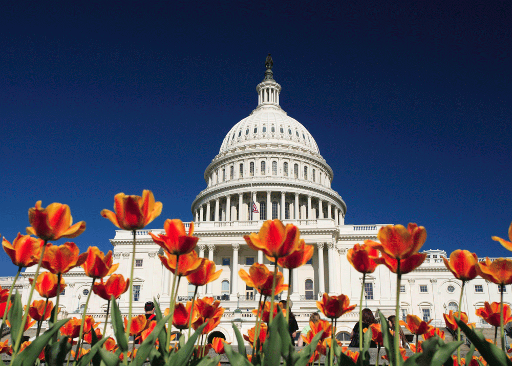 Record Attendance in our Nation's Capital for the 2015 Annual Meeting
